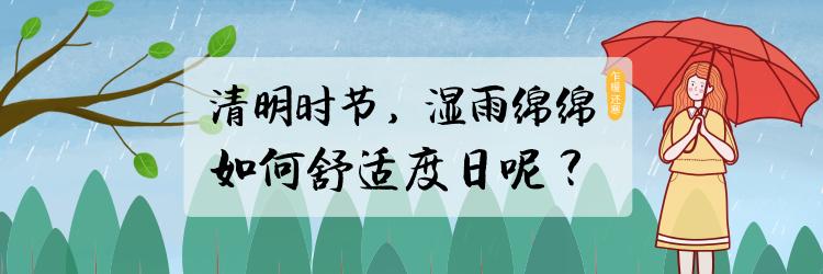 清明时节,湿雨绵绵!如何舒适度日呢?
