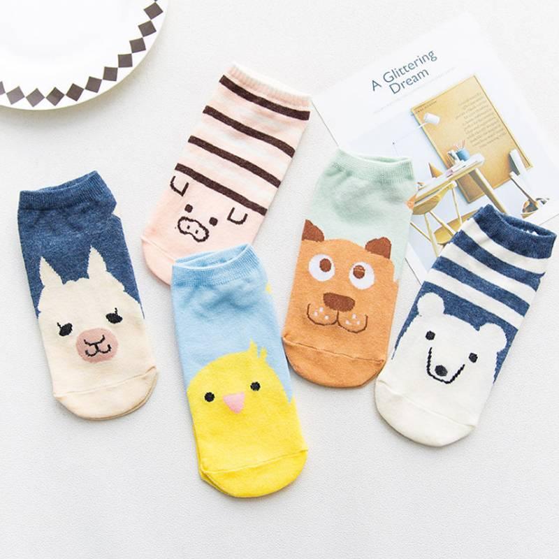 5双袜子女短袜浅口韩国可爱船袜女纯棉隐形袜秋冬款硅胶防滑袜