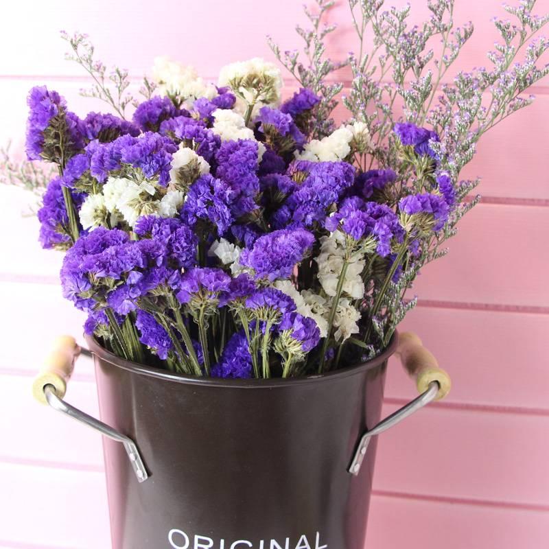 今日秒杀 云南天然干花花束真花勿忘我家居客厅摆设超大花束