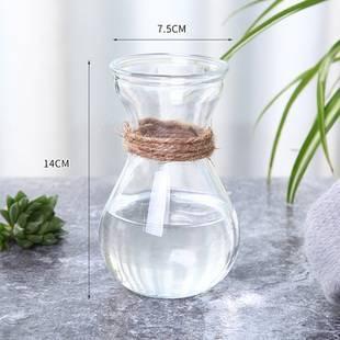 欧式简约水养植物绿萝器皿客厅摆件