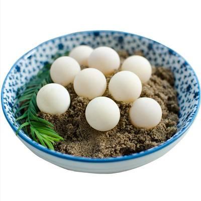 中华鳖蛋新鲜甲鱼蛋乌龟蛋王八蛋非鸡蛋鸟蛋宝宝辅食营养餐100个