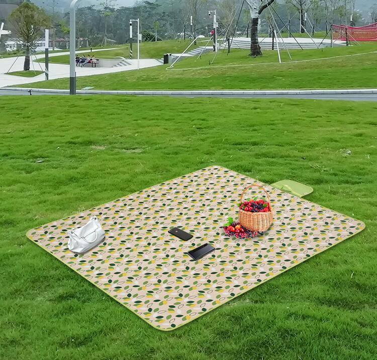 防潮垫户外加厚帐篷垫露营野外沙滩草地垫郊游野炊野餐垫宿舍睡垫