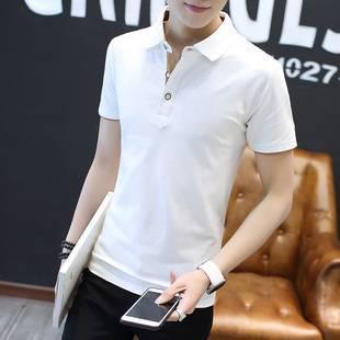 2件装夏装纯棉短袖t恤 男衬衫领半袖潮流上衣服体恤修身polo衫
