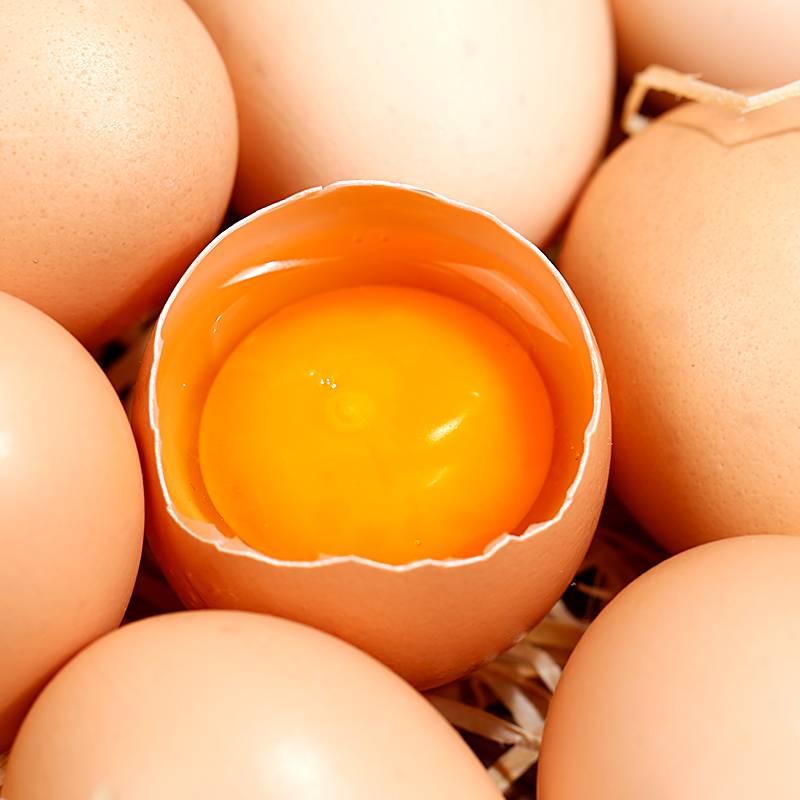 【新鲜现发】农家散养土鸡蛋40枚